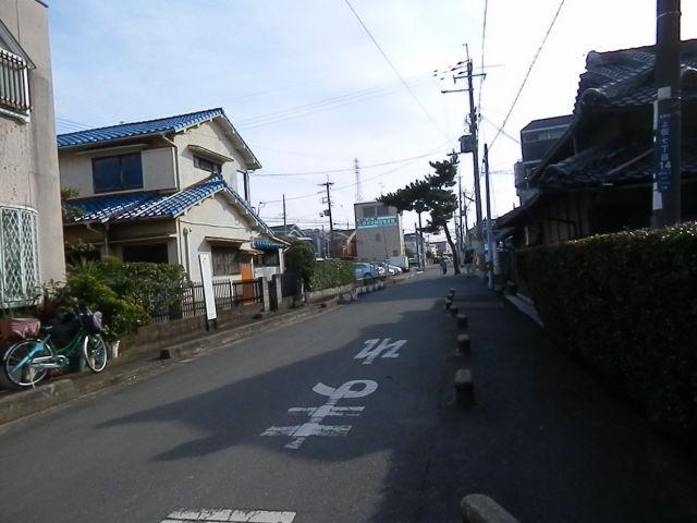 P1077831.JPG